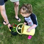 child watering a plant