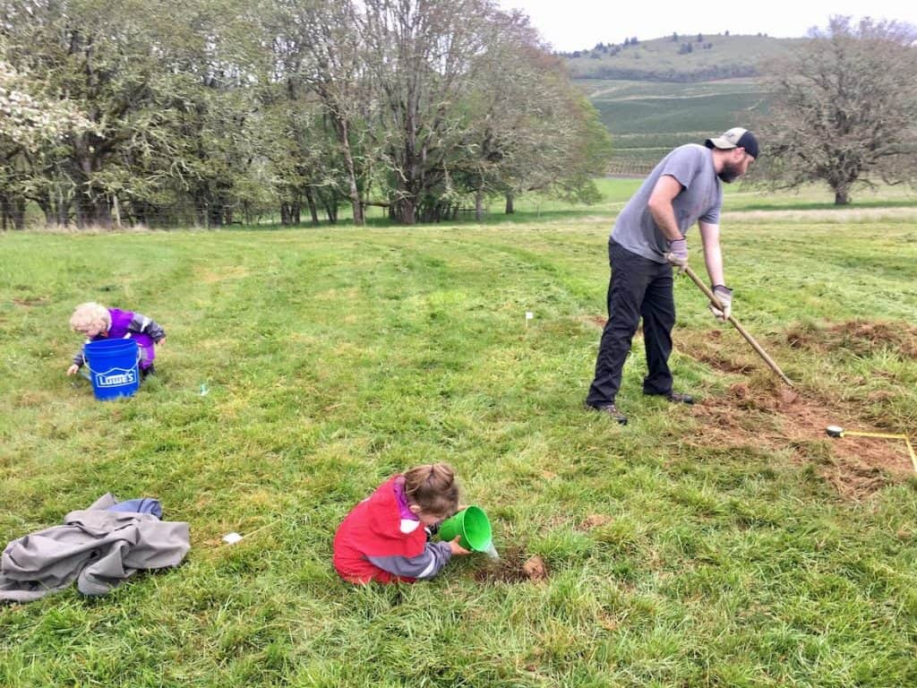 double digging vegetable garden beds and kids playing with buckets