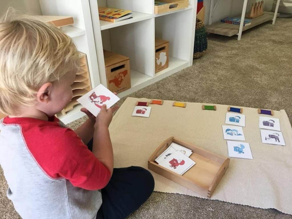child sorting grace and courtesy picture cards