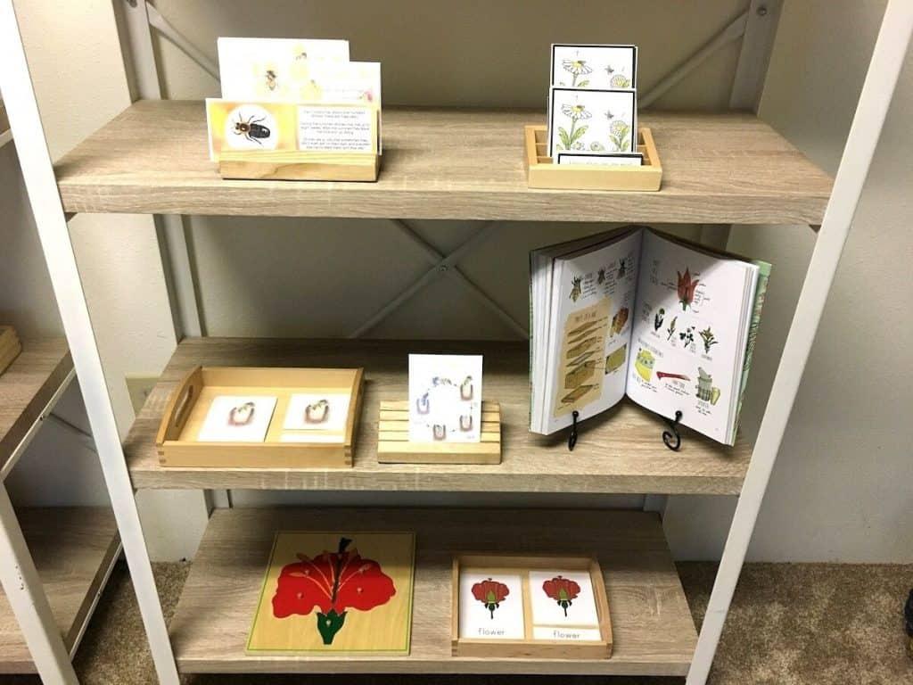 Montessori Bee Unit Study Shelf Work