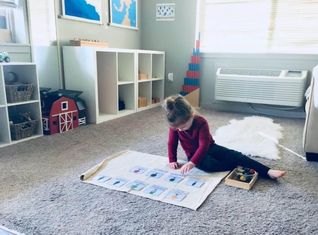 Montessori child using nomenclature cards and tree manipulatives