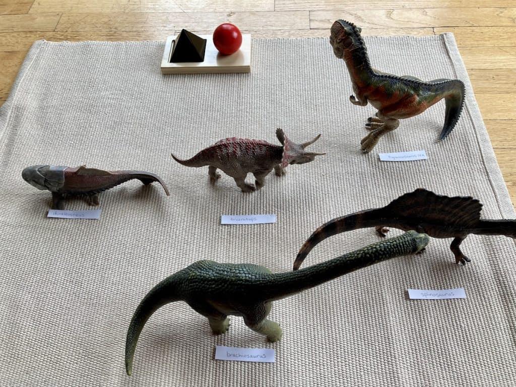 Dinosaur Nouns Grammar Lesson